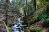 Schwarzwarld (JK_Fotografie) Tags: schwarzwald badenwürttemberg natur landscape deutschland landschaft wasserfall waterfall forrest blackforest