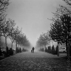(foto-german) Tags: blackwhite blackandwhite bw fog blackwhitepassionaward