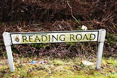 DSC_8914 (PeaTJay) Tags: nikon england uk gb royalberkshire reading winnersh flowers plants trees bushes