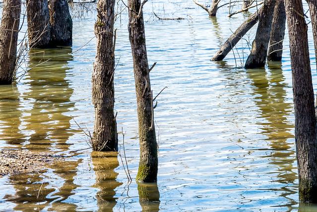 Monroe Lake - March 18, 2018