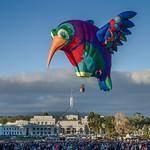 Canberra Balloon Spectacular 2018 - 11 - Parkes - ACT - Australia - 20180310 @ 07:31 thumbnail