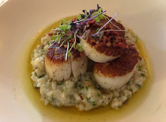 Pan-roasted day boat scallops with lobster risotto, preserved lemon and warm bacon-herb vinaigrette. (apardavila) Tags: jerseyshore manasquan remingtons fish food lobsterrisotto panroasteddayboatscallops restaurant risotto scallops