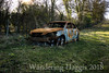 Burn Out (wanderinghaggis) Tags: car burnt out fire abandoned rust rusting field outdoor scene surreal sony a6000 destroyed destruction waste vandalized stolen left rotting metal