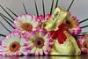 Happy Easter (redfurwolf) Tags: easter bunny flower macro chocolate lindt goldhase sonyalpha a7r sel90f28g redfurwolf flash sony sonyimaging captureonepro11