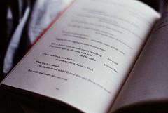 .fire. (Camila Guerreiro) Tags: book poetry film expiredfilm adalimon analog camilaguerreiro grain helios44 pentaxmesuper expired centuriahd200 centuria helios442