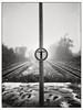 no_trespassing (Andre Kurenbach) Tags: winter railway station sign symbol no trespassing stop snow cold lonely sad fog foggy dark film analogue push tmax kodak 35mm canon new f1