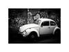 Der käfer (chalk.and.sun) Tags: käfer escarabajo beetle bug coccinelle maggiolino viacasilinavecchia volkswagentype1