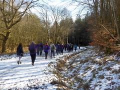 Ramblers in Tamfourhill Wood (luckypenguin) Tags: scotland falkirk camelon tamfourhill bantaskine ramblers walking snow ice johnmuirway jmw