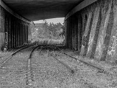 Tipton Road, Dudley (Jason_Hood) Tags: blackandwhite monochrome southstaffordshireline southstaffordshirerailway bridge disused abandoned railway railroad