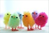 Easter Chicks (haberlea) Tags: home athome chicks easter decorations stilllife colours rainbow happyeaster onwhite