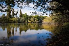 Waikato River Te Awa trail (rogsykes) Tags: sonya77ii ndfilter river waikato hamilton beautyofwater