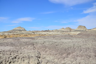 Bisti/De-Na-Zin Wilderness 85