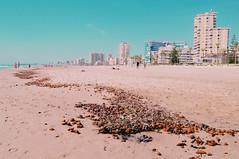 (Virginia Gz) Tags: campello elcampello alicante comunidadvalenciana españa spain mediterranean mediterraneansea beach playademuchavista