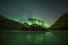Reflecting Aurora (peterspencer49) Tags: peterspencer peterspencer49 aurorasborealis aurora reflections reflection ice norway nightphotography nordlys northernlights night fjord lofotenislands
