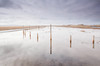 Posts (Julian Barker) Tags: lindisfarne causeway holy island northumberland north east england great britain uk europe road sea water reflection sky posts upright dunes flood flooding high key effect canon dslr mkii julian barker open space wide vista landscape uncluttered