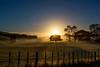 Magical Morning Mist (Antony Eley) Tags: mist farm rural golden sunrise tree fenceline rays
