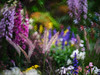 Secret Garden (3dgor 加農炮) Tags: flowershow flower minolta reflexlens