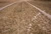 Querétaro -0915171103 (Jacobo Zanella) Tags: queretaro mexico 2018 sendero camino senda path line hidden mysterious rural land rough jacobozanella jz76