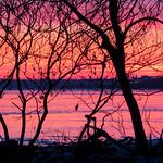 Pink Sunrise - Lever de soleil rose thumbnail