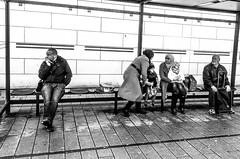 Diagonal of urban life (A. Yousuf Kurniawan) Tags: composition muslim decisivemoment diagonal blackandwhite monochrome minimalism minimalist cameraphone cameraphonestreet phonestreet streetphotography urbanlife busstop hijab