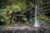 Russell Falls, Tasmania  FE 12-24 + NiSi S5 Filter System (mark galer) Tags: s5 filter nisi 1224 fe sony