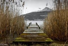 Au pays de Robinson (paul.porral) Tags: poselongue longexposure le landscape landschaft lake flickr ngc nature countryside exposure france rhonealpes water lacdannecy waterscape