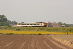 IR 854 - Nine (valeriodossantos) Tags: comboio cp train passageiros utd592 automotoradiesel unidadetripladiesel camello interregional cpregional nine vilanovadefamalicão linhadominho caminhosdeferro portugal