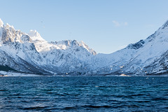 Lofoten 2018 (Marianne Zumbrunn) Tags: lofoten 2018 nikon d610 nikond610 white snow cold winter view tamron 2470mm tamron2470mm f28 sildpollnes