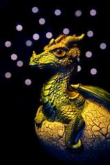 Baby Dragon! (bharathputtur122) Tags: macromondays onceuponatime mystical dungeons dragons fairy tales egg hatching breakout nikon d750 nikkor mondays challenge legend