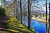 River Tay Walk (eric robb niven) Tags: ericrobbniven scotland landscape walking trees winterspring spring perthshire caputh dunkeld rivertay