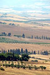 DSCF7815_e (Bronko) Tags: pienza italien italia toskana toscana tuscany summer sommer