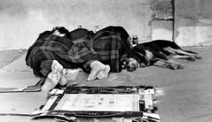 nobody awaits them (gianclaudio.curia) Tags: bianconero blackwhite persone cane coperta pellicola kodaktrix nikon fm2n sviluppo rodinal cameraoscura meoptaopemusmultigrade cartafotografica ilford saariysqualitypictures