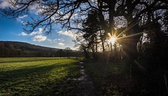 Glint (Phil-Gregory) Tags: nikon d7200 tokina tokina1120mmatx 1116mmf8 1120mmproatx11 1120mmproatx 1120mmf2811 colours colour color countrylife countryside hathersage wideangle ultrawide light sun trees sky morning peakdistrict