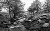 NB-18.jpg (neil.bulman) Tags: countryside longexposure longshawestate flowingwater tree peakdistrict nature nationalpark derbyshire longshaw rocky water trees flowing rocks derbyshiredalesdistrict england unitedkingdom gb