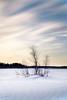 Frozen lake / Järven jäällä (Olli Tasso) Tags: lake frozen ice hiivalahti suomi finland tree birch koivu puu saari island sunset auringonlasku maisema landscape outdoors nature luonto ulkoilu järvenjää jäässä jää järvi lempäälä