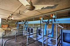The dairy. (Ian Ramsay Photographics) Tags: camdentownfarm camdencouncil camden newsouthwales australia llewelladavies hectare dairy community gift bequeath dedicated charitable organisations life