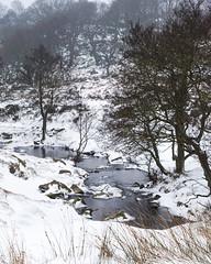 DAN_7456 (dan_c_west) Tags: nikon d750 padley gorge longshaw estate national trust peakdistrictnationalpark peak district park snow landscape winter water brook derbyshire