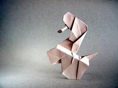 Acrobatic Puppy - Madiyar Amerkeshev (Rui.Roda) Tags: origami papiroflei papierfalten chien dog cão cachorro perro acrobatic puppy madiyar amerkeshev