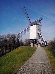 Mill (marco_albcs) Tags: bruges brugge brujas belge belgium belgique europa europe westflanders flander vlaams mill windmill dutchmill