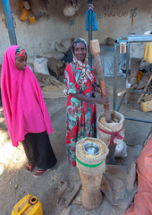 Somali woman using mortar and pestle, Woqooyi Galbeed region, Hargeisa, Somaliland (Eric Lafforgue) Tags: adultonly africa african africanethnicity blackethnicity culture developingcountry documentary eastafrica female hargaysa hargeisa hargeysa hijab hornofafrica islam islamic lifestyle market marketplace mortar muslim oneperson onepersononly onewomanonly outdoors pestle portrait smile smiling soma5675 somali somalia somaliland traditionalclothing veil vertical woman women working woqooyigalbeedregion