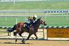 "2018-04-13 (43) r4 Edwin Gonzalez on #6 Cannon's Roar for the win (JLeeFleenor) Tags: photos photography md marylandracing maryland marylandhorseracing laurelpark outside outdoors jockey جُوكِي ""赛马骑师"" jinete ""競馬騎手"" dżokej jocheu คนขี่ม้าแข่ง jóquei žokej kilparatsastaja rennreiter fantino ""경마 기수"" жокей jokey người horses thoroughbreds equine equestrian cheval cavalo cavallo cavall caballo pferd paard perd hevonen hest hestur cal kon konj beygir capall ceffyl cuddy yarraman faras alogo soos kuda uma pfeerd koin حصان кон 马 häst άλογο סוס घोड़ा 馬 koń лошадь o"