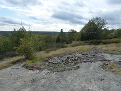 Expansive View 1 (geodeos) Tags: sheffieldconservationarea canadianshield granite rock stone forest tree grass lichen moss scenery landscape nature