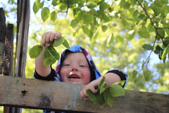 Leaves! (quinn.anya) Tags: paul toddler leaves adventureplayground