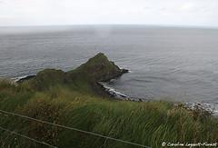 Giant's Causeway - Pinky (Caroline Forest Images) Tags: ireland northernireland giantscauseway landmark travel roadtrip uk cliffs