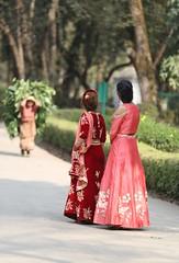 different daily lifestyle (Rajesh Khatri Photos) Tags: nepal nepali nepalese fa fashion green lifestyle villagelifestyle