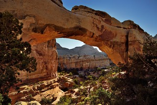A View Through and Beyond the Hickman Bridge (Capitol Reef National Park)