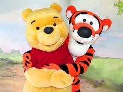 Pooh and Tigger (meeko_) Tags: winnie pooh winniethepooh tigger themanyadventuresofwinniethepooh bear characters disneycharacters fantasyland magic kingdom magickingdom themepark walt disney world waltdisneyworld florida explore