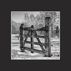 Grinden (janlof671) Tags: gate blackandwhite monochrome rural countryside wood