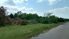 IMG_20180418_141244752_HDR (LnCS) Tags: giddings line railroad rehab rehabilitation construction texas sp htc austin western