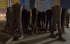 Aimless Wandering (urbsinhorto1837) Tags: agora chicago city grantpark light magdalenaabakanowicz night publicart sculpture southloop urban outdoors